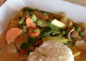 Lunch Portion Panang Curry