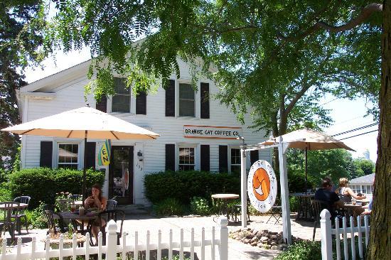 Orange Cat Coffee Co