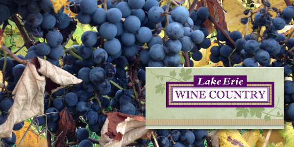 Lake Erie Wine Country Feature